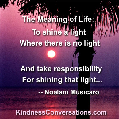 MEANING OF LIFE: TO SHINE A LIGHT WHERE THERE IS NO LIGHT AND TAKE  RESPONSIBILITY FOR SHINING THAT LIGHT.    Noelani Musicaro